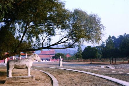 北京出发悠然自驾清东陵