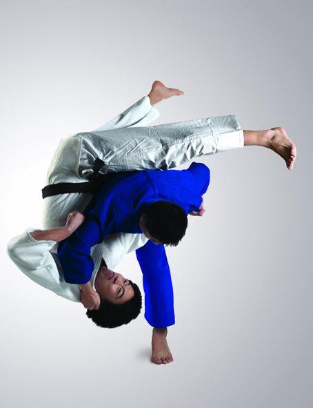 奥运会项目:柔道