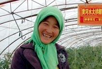 宁夏节水农业使农民获益