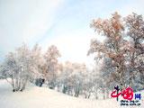 投稿選登:劉長春——壩上2008年的第一場雪[組圖]