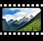 http://big5.china.com.cn/gate/big5/images.china.cn/attachement/jpg/site1000/20081209/0019b91ec8e50aa881ca4f.jpg