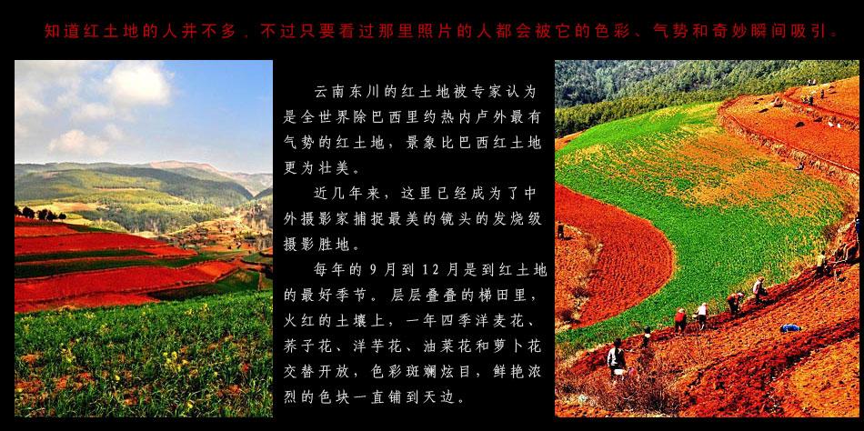 http://images.china.cn/attachement/jpg/site1000/20081209/0019b91ec8e50aa881ca56.jpg