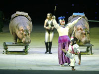 长隆国际马戏表演 (资料图)