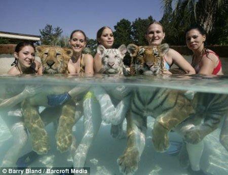 人与动物人与动物人与动物做爱人与动物交配