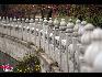 无锡灵山。中国网 摄影 杨佳