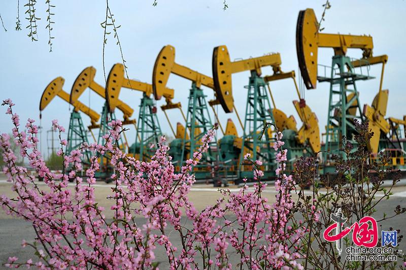 北國石油之都大慶 立夏時節春方到[組圖]