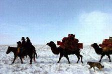 哈萨克牧民转场