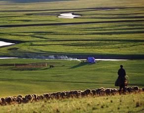 内蒙古草原风光