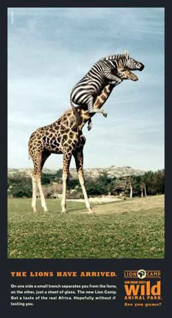 奇妙搞笑的动物园海报(图)
