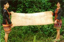 黎族树皮布