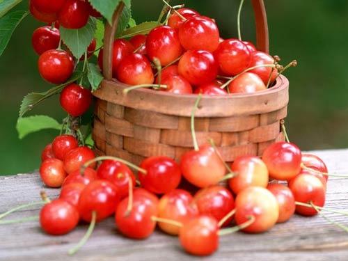 人体血红蛋白的原料,因此樱桃也成为红润肤色的最佳水果.>>每天吃