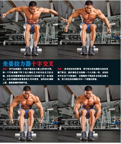 锻炼胸肌的10速成方法 - what-hifi - 品臻