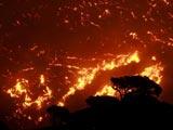 希腊山火势头不减 浓烟笼罩雅典北部上空[组图]