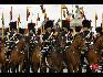在比利时国庆阅兵式上,皇家护卫队。(图片由比利时驻华使馆提供)