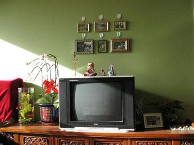 浅绿色欧式高档壁纸贴图