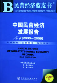 2009年中国民营经济发展报告