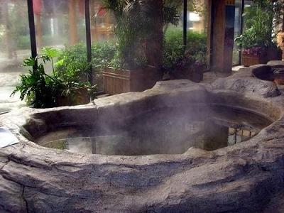 家用溫泉泡池裝修圖