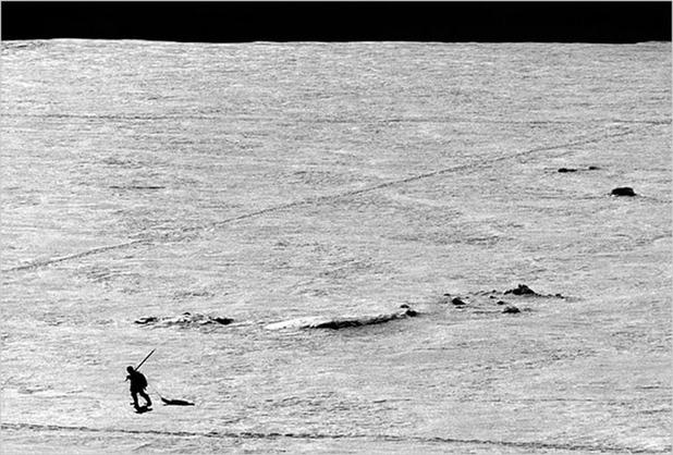 因纽特人千年狩猎习俗衰落 冰盖融化恐无猎可打 ...