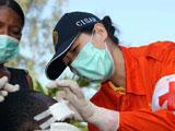 中国救援队在太子港继续医疗服务[组图]