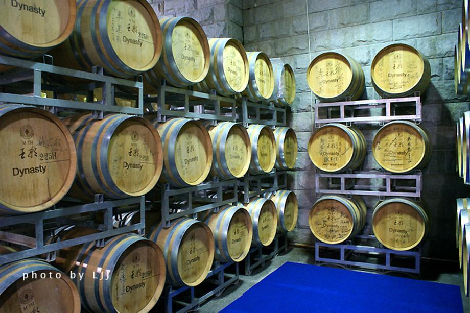 4500多个橡木桶均价值不菲,可以陈酿葡萄酒1300多吨,致使酒窖裏四处
