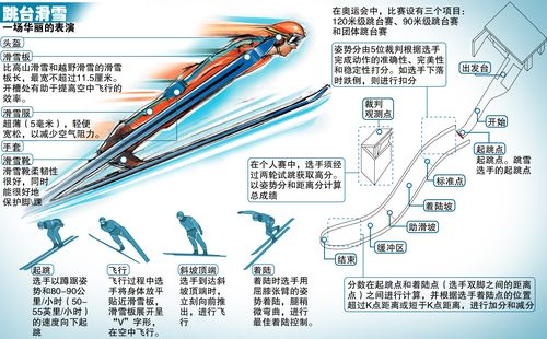跳台滑雪图示   2010年温哥华冬奥会跳台滑雪比赛将在北京...