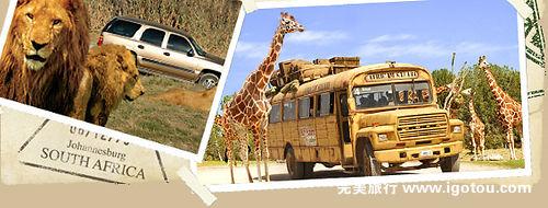 全球最有趣的野生动物园