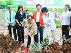 重庆市万名志愿者聚集 两小时种树1.5万棵