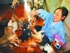 退休女工18年收养百余只流浪狗