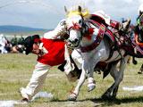 羌塘赛马节