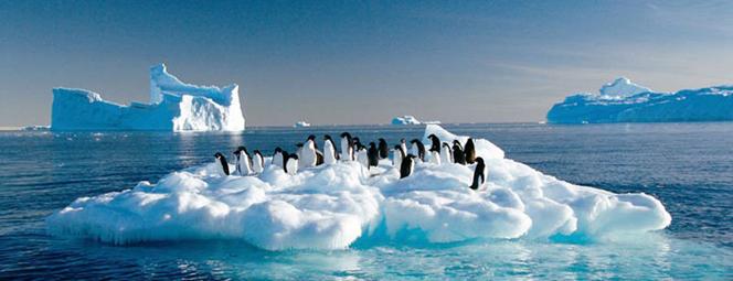 2010年环保图片大赏:保护我们的地球母亲