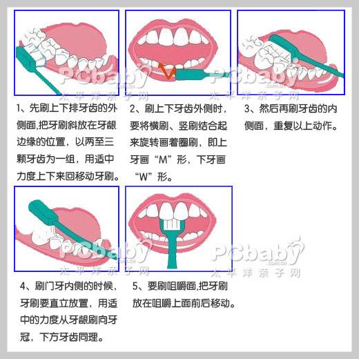 宝宝刷牙的正确步骤(组图)