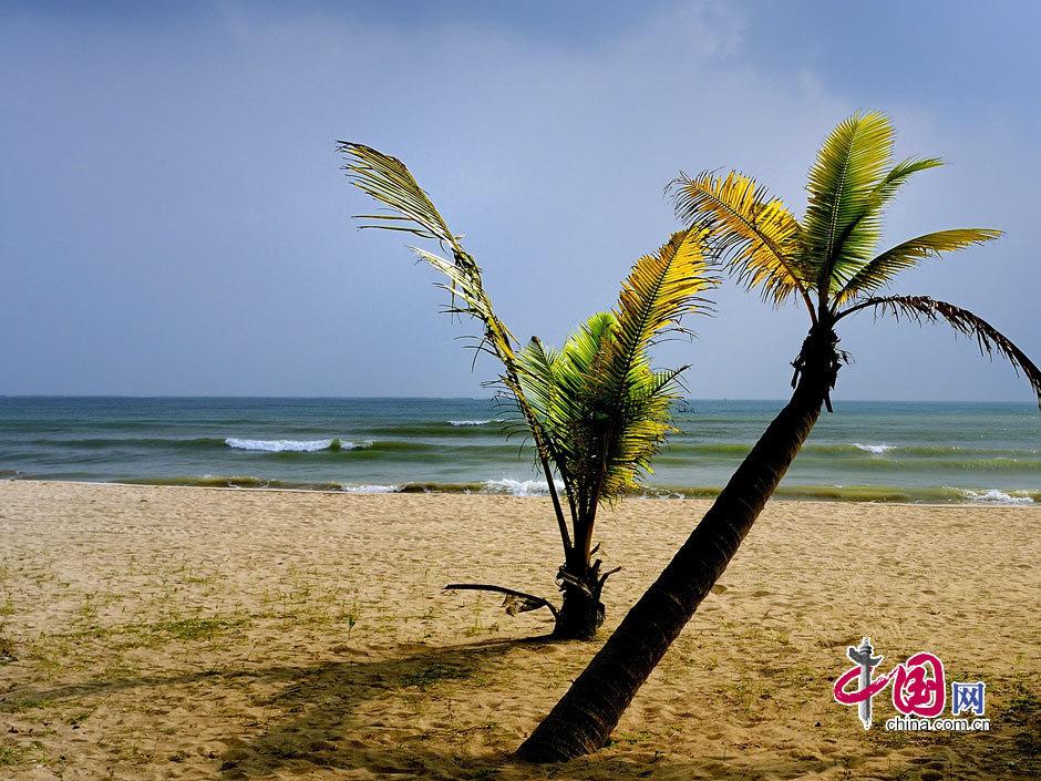 海南的东郊椰林位于文昌市境内的东郊镇,与著名的清澜港相邻,这里碧海