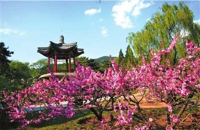 北京植物园平面图高清