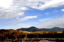 新疆阿勒泰 迷一样的青格里——青河县