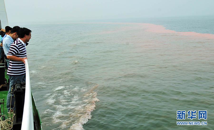 7月15日,在蓬莱19-3漏油事故B、C平台附近海域出现赤潮,引人围观。新华社记者郭绪雷摄