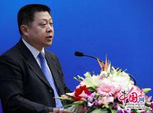 王仲伟在第二届中译外高层论坛开幕式上的讲话