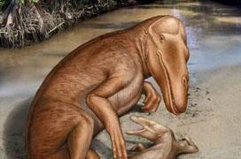 """德科學家發現""""會行走的鯨魚"""" 源自古埃及"""