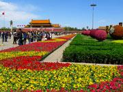 天安门广场花团锦簇 欢声笑语喜迎五一[组图]