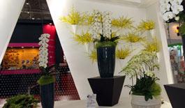 2012北京台湾名品博览会开幕 台湾精品再现京城
