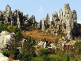 云南石林世界地质公园