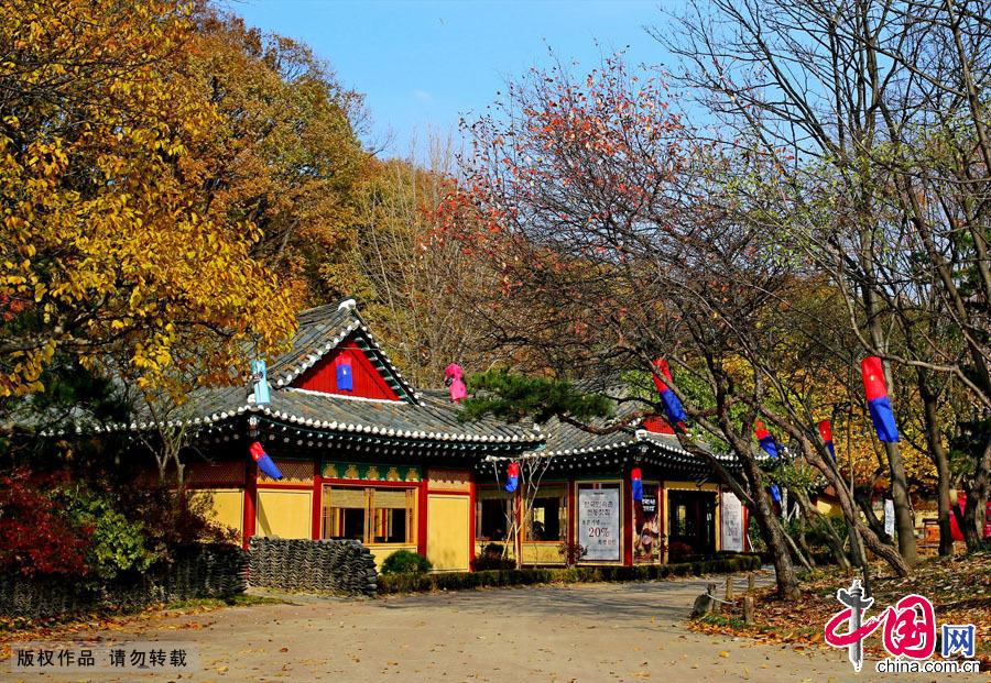 韩国民俗村深秋 中国网图片库 丁卫摄影  韩国民俗村是韩...