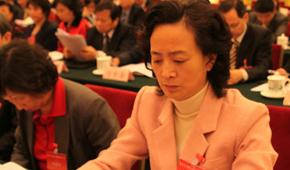 第九次全国台湾同胞代表大会在京召开