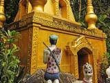云南省德宏州瑞丽市莫里热带雨林景区