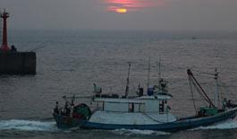 台湾南部见闻: 海峡夕阳 野猫上古厝