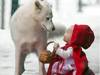 小红帽 大灰狼/小红帽和大灰狼