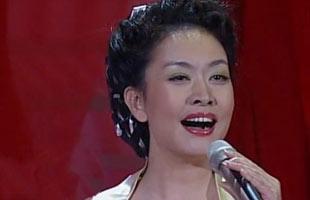 彭丽媛28年经典造型大回顾(组图)