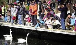 4月6日,北京动物园水禽湖,投喂水禽的游客与孩子。新京报记者 李飞 摄
