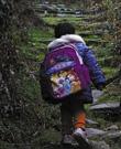 王家兄妹:为上学,兄妹俩每天走山路一小时