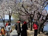 春光满颐和 尽享大自然