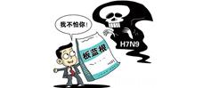 """中医药局开防治""""药方"""":桑叶、金银花"""